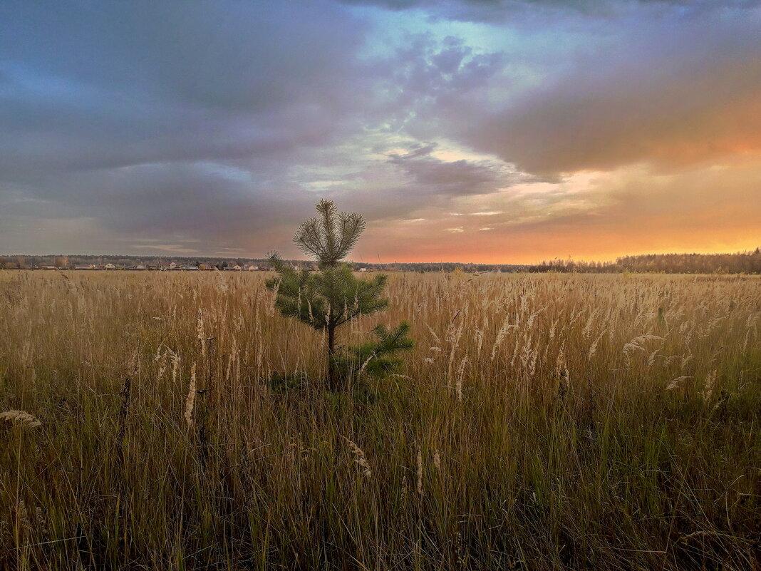 Краски октябрьских закатов - Лара Симонова