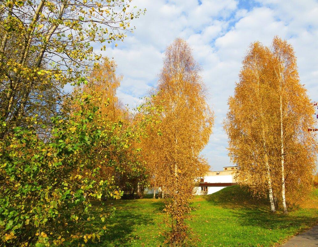Горят осенним золотом - Андрей Снегерёв