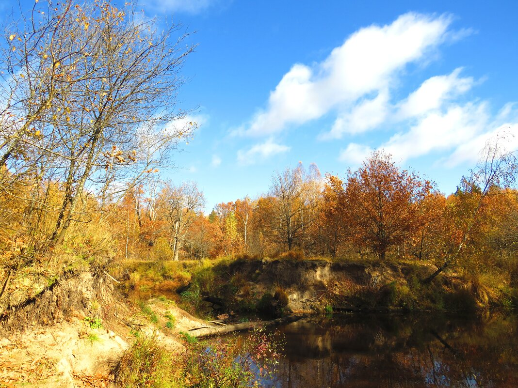 Осенью на реке - Андрей Снегерёв