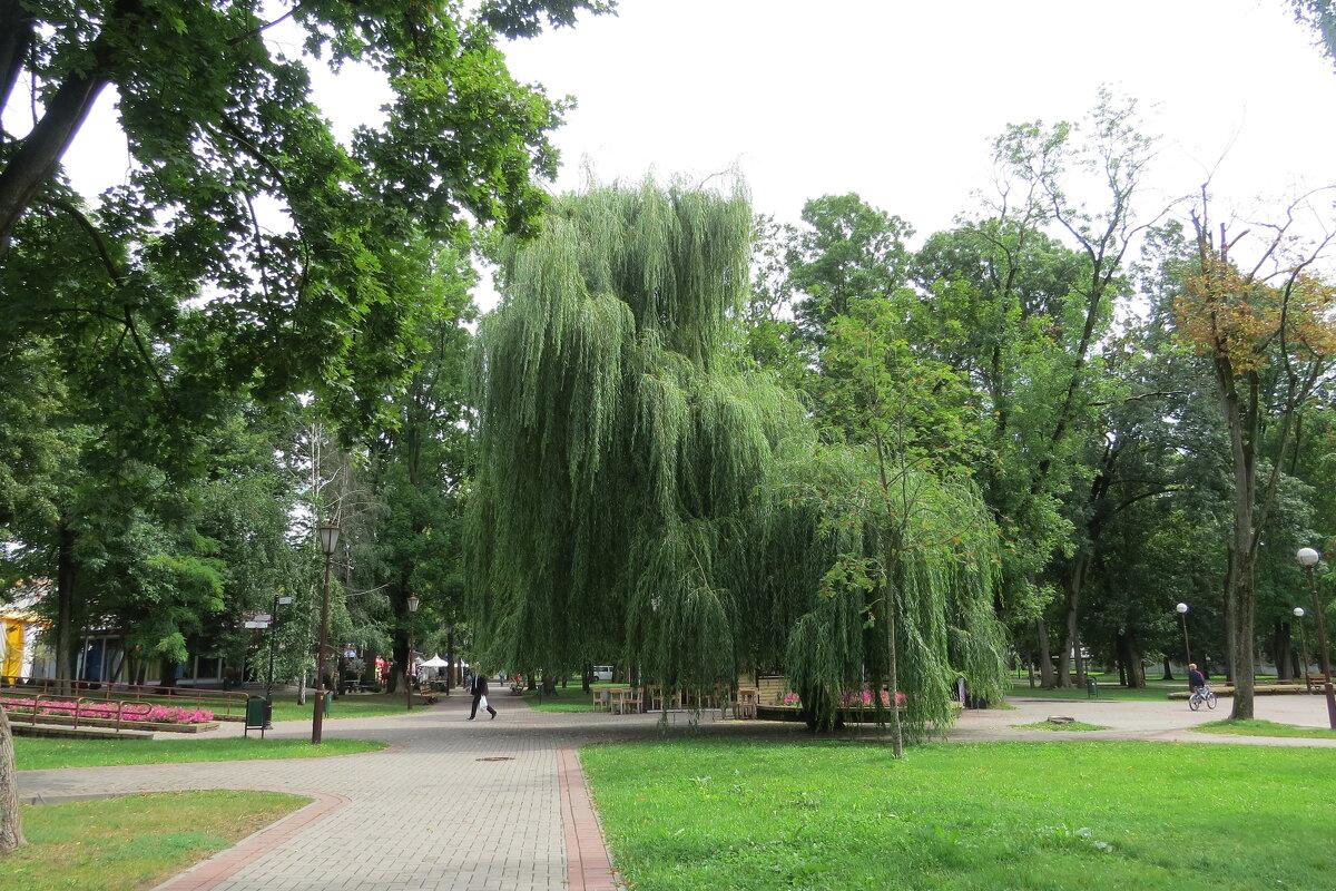 В парке - Вера Щукина