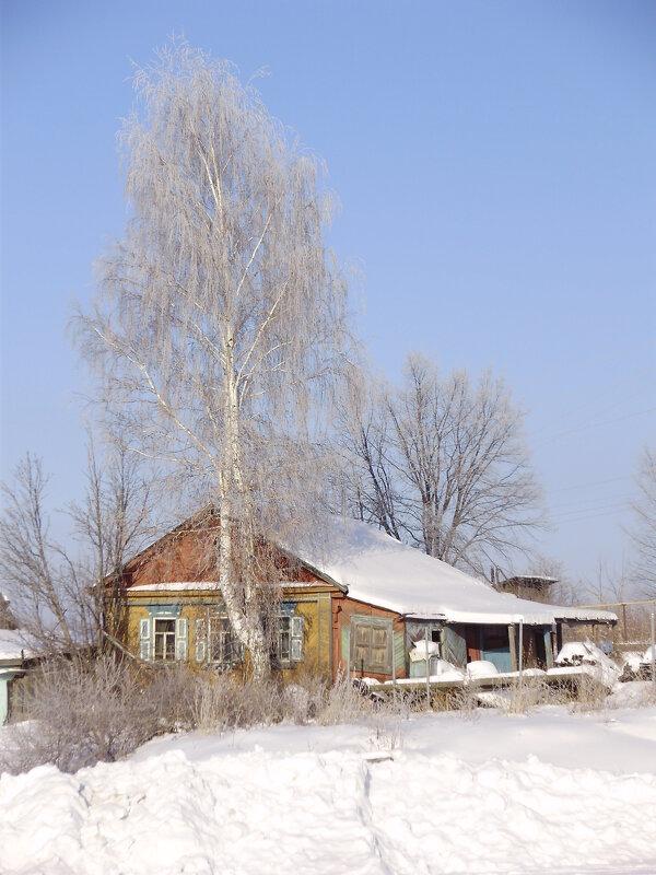 Изба и береза - Иван Семин