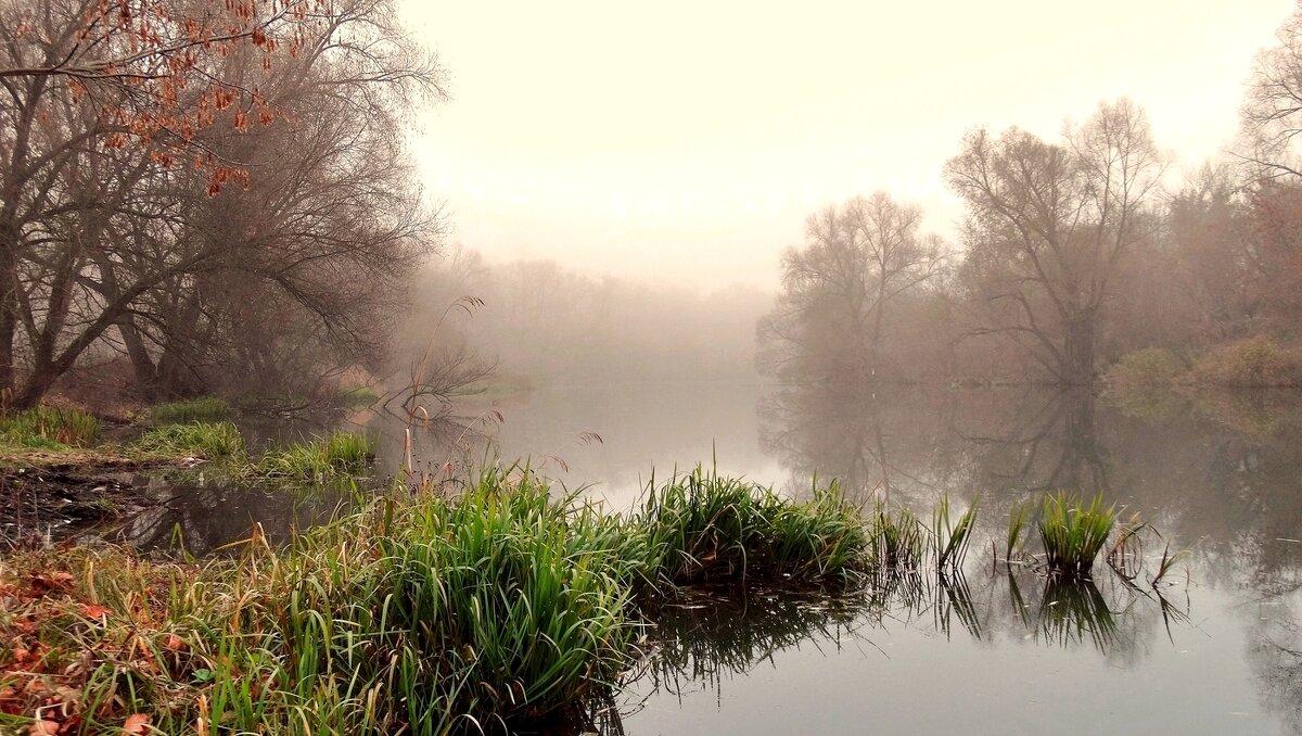 Туман опустился на реку - Александр Бойченко
