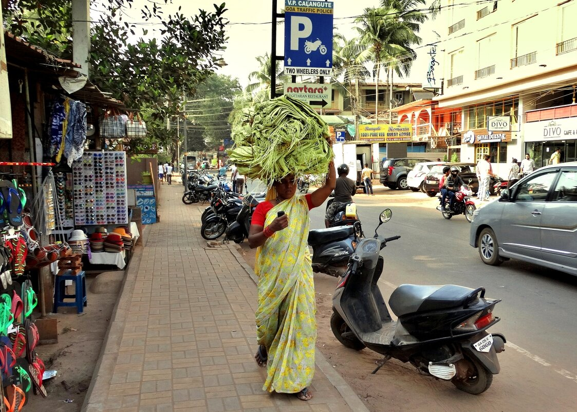Такова жизнь в Индии - Александр Бойченко