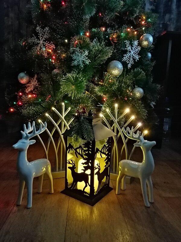 Новый год - ОКСАНА ШВЕЦ
