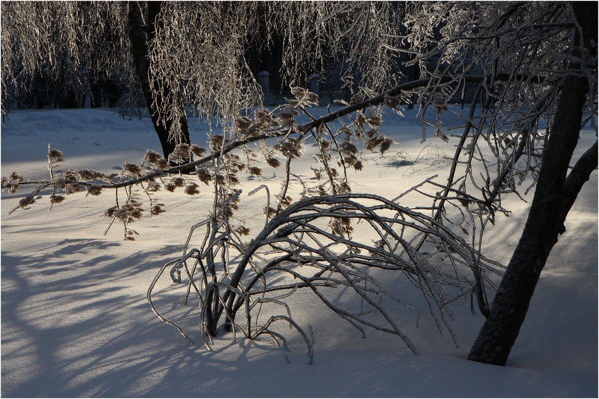 Была красота, ледяной дождь - ZNatasha -