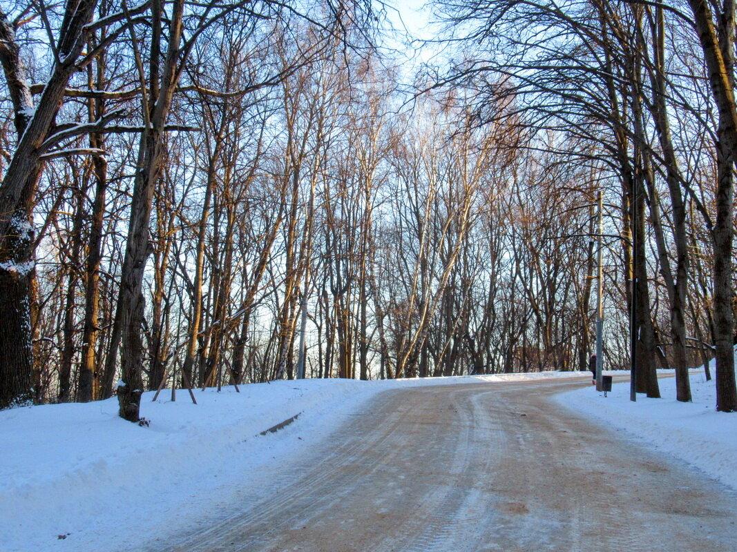 Дорога зимним утром - Александр Чеботарь