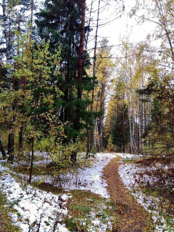 природа - Владимир