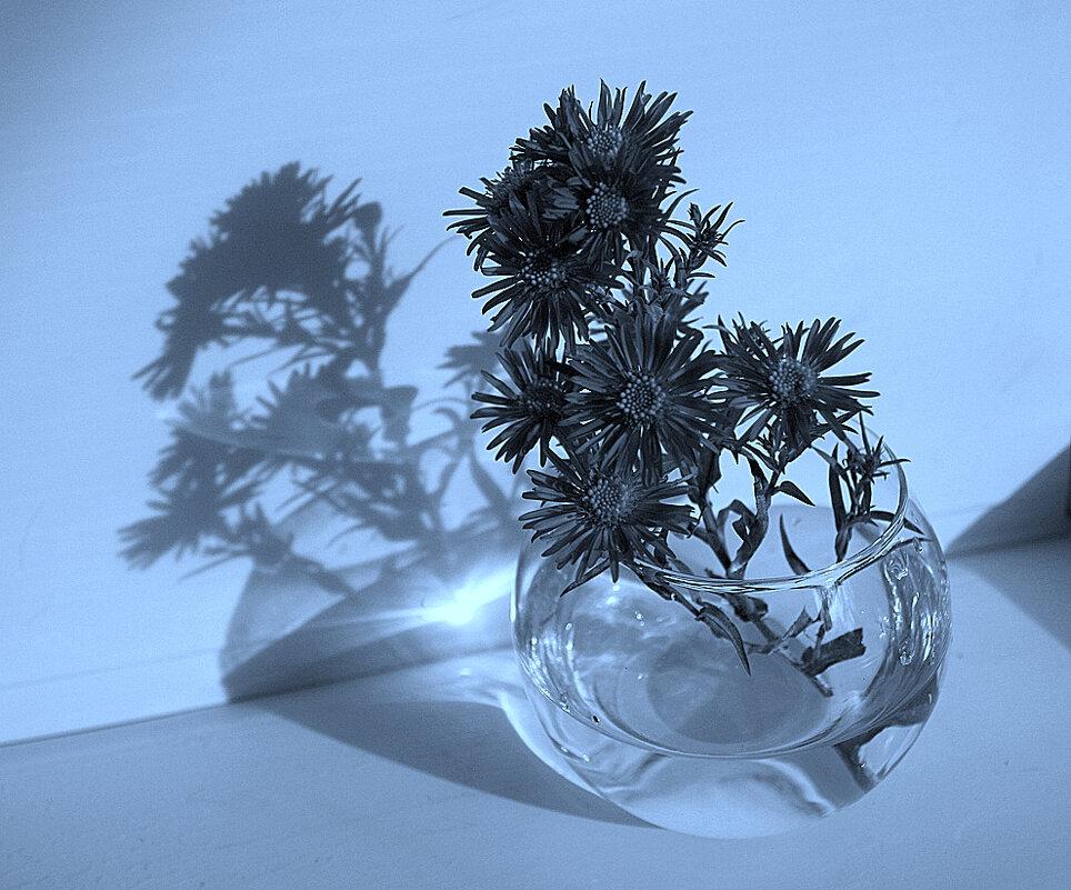 Цветы с тенью - Зуев Геннадий