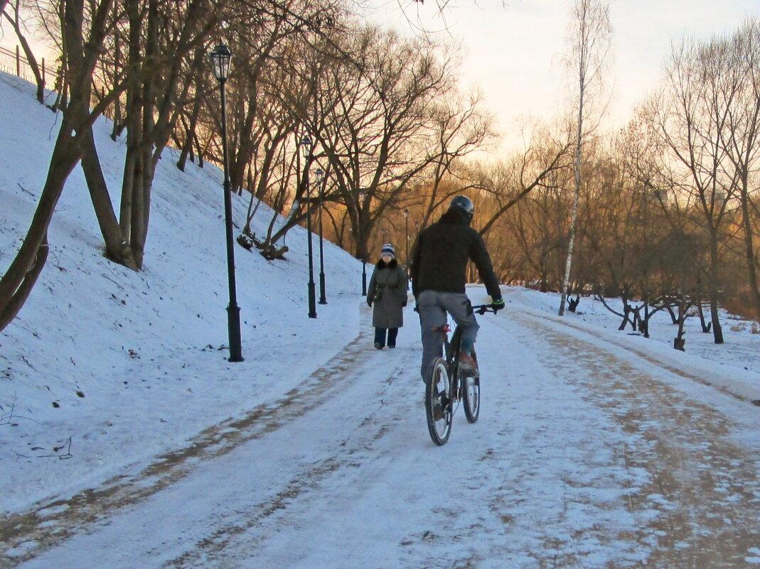 Прогулки зимой - Ольга Довженко