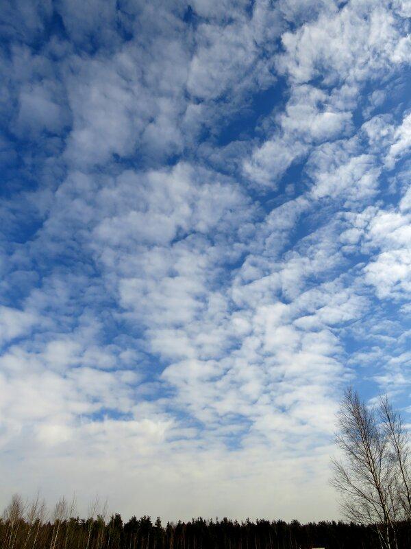 Удивительное небо - Андрей Снегерёв