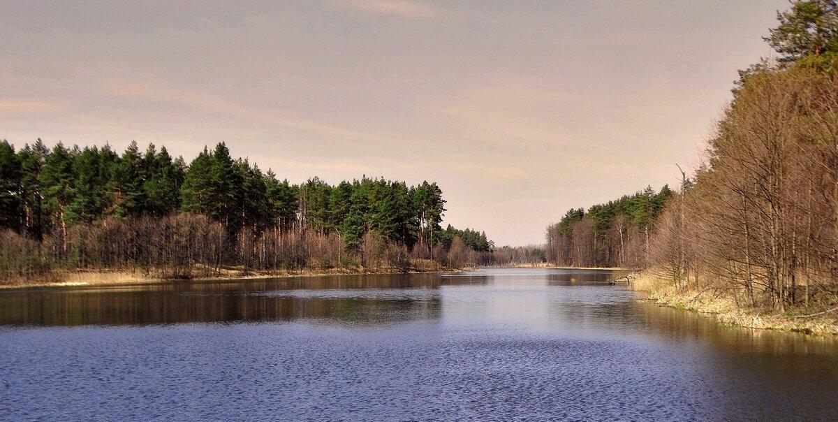 Апрель на озере - Александр Бойченко