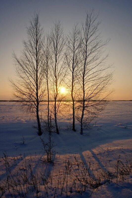 Зима,закат. - сергей