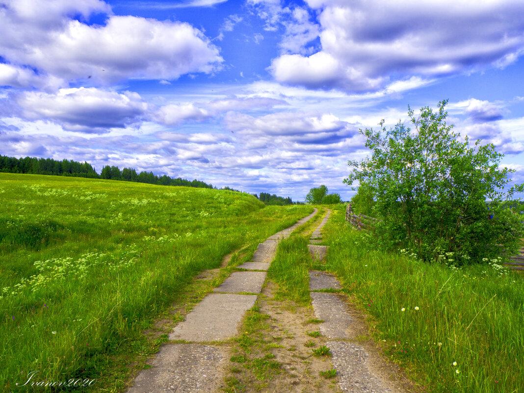 Дорога в поле - Дмитрий Иванов