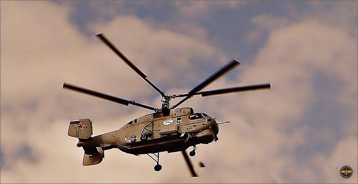Сегодня День авиации ВМФ - Кай-8 (Ярослав) Забелин