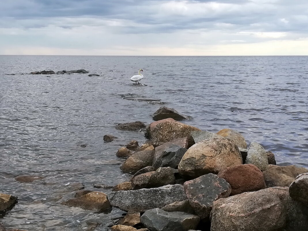 Чудское озеро - veera (veerra)
