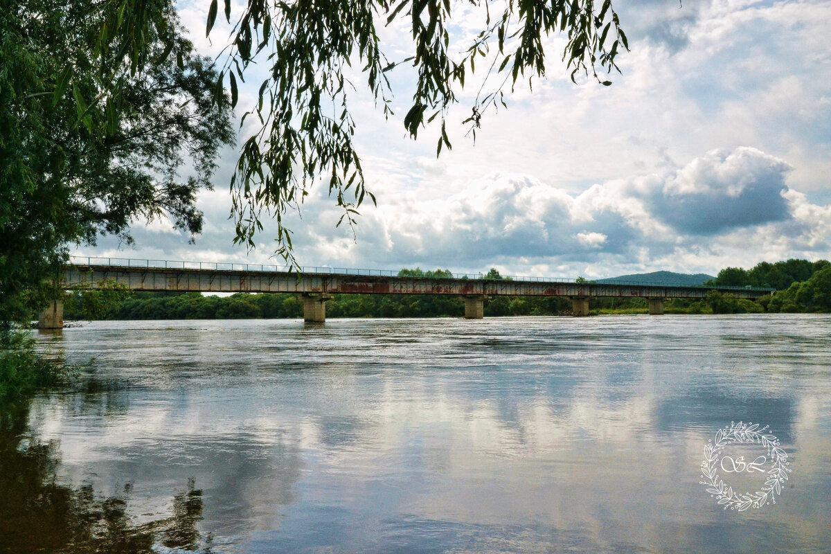 Мост через реку Уссурка - Елена Соловьева
