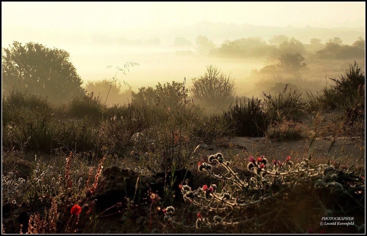Утро туманное. - Leonid Korenfeld