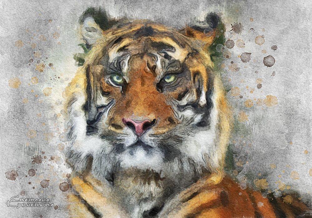 Тигр - Светлана Кузнецова