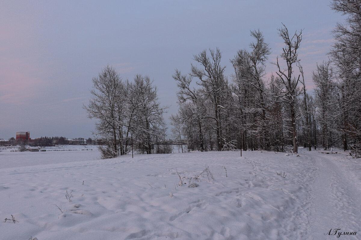 Зимний вечер - Людмила Гулина
