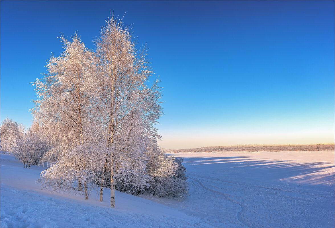 Морозный день - Shapiro Svetlana