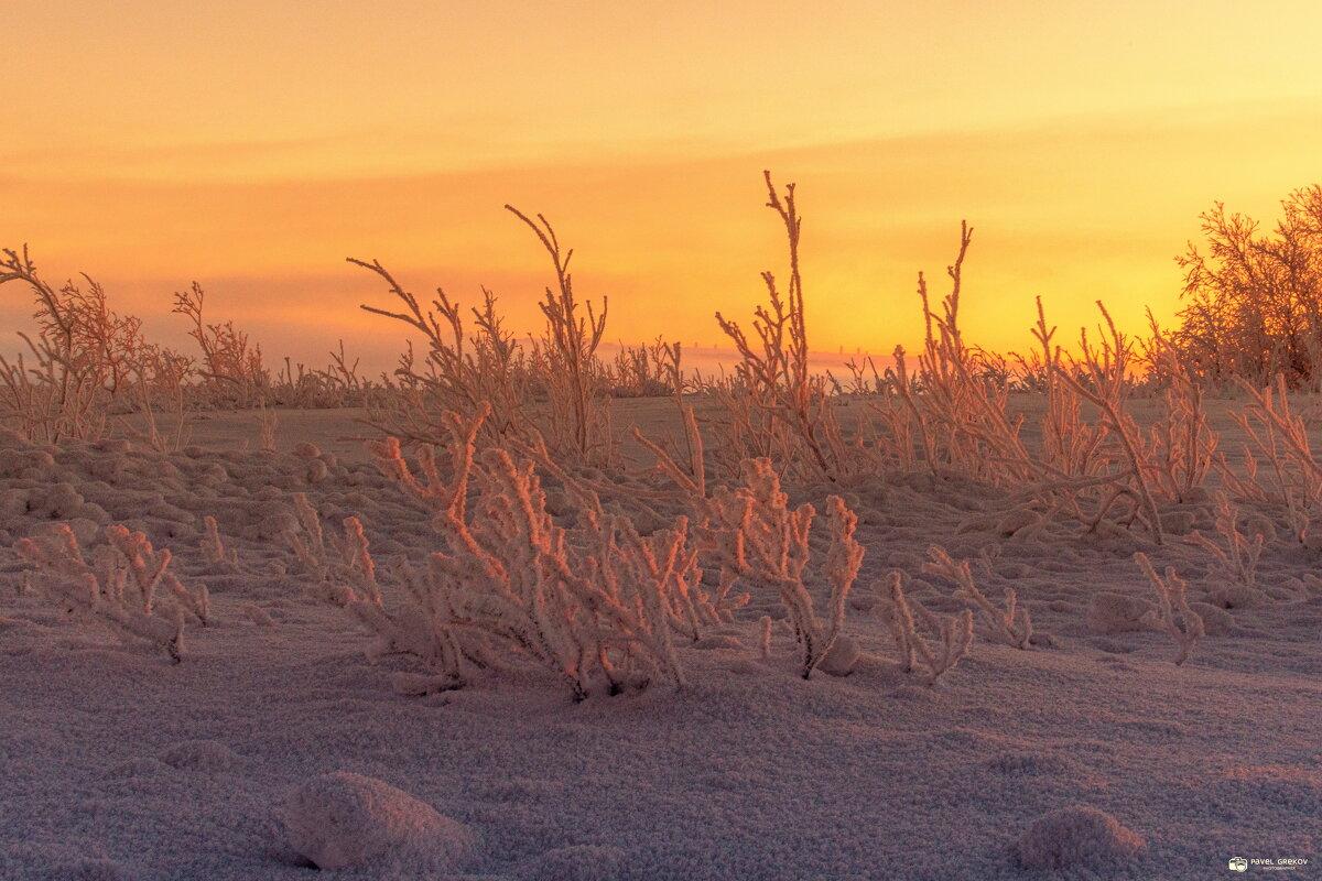 Зима на севере - Павел Греков