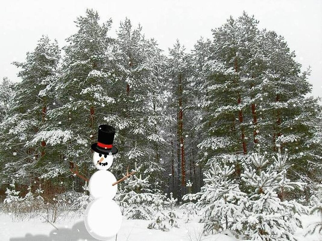 Снеговик в лесу - Натала ***