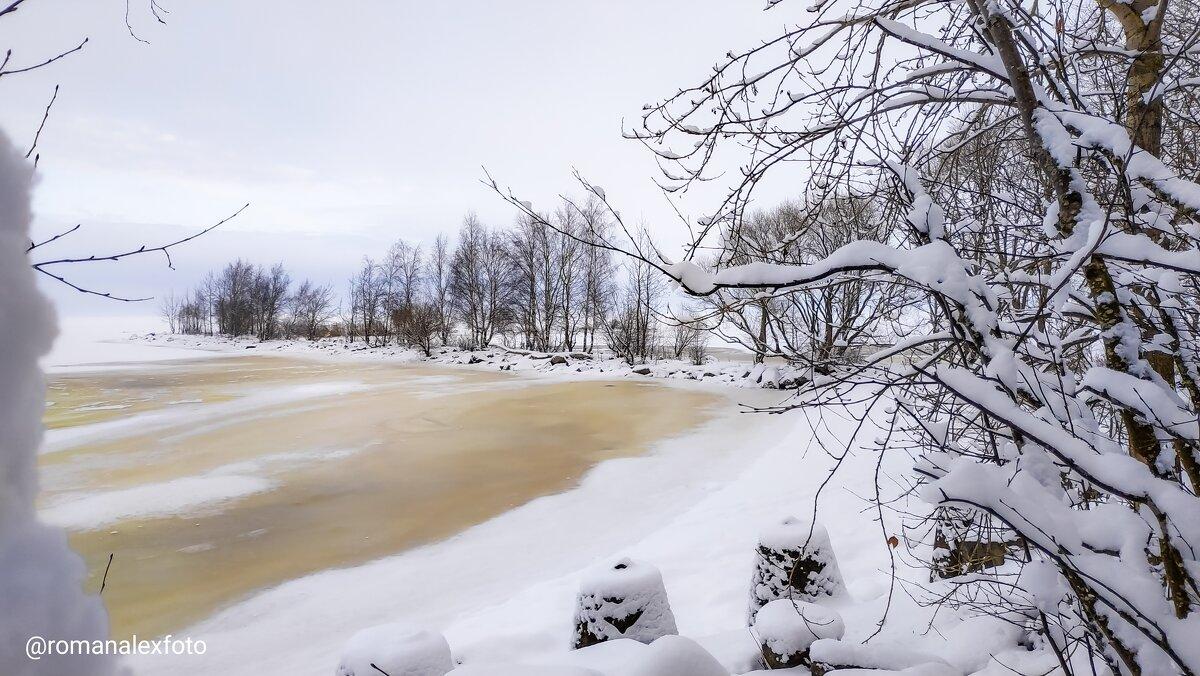 Зима в Петергофе - Роман Алексеев