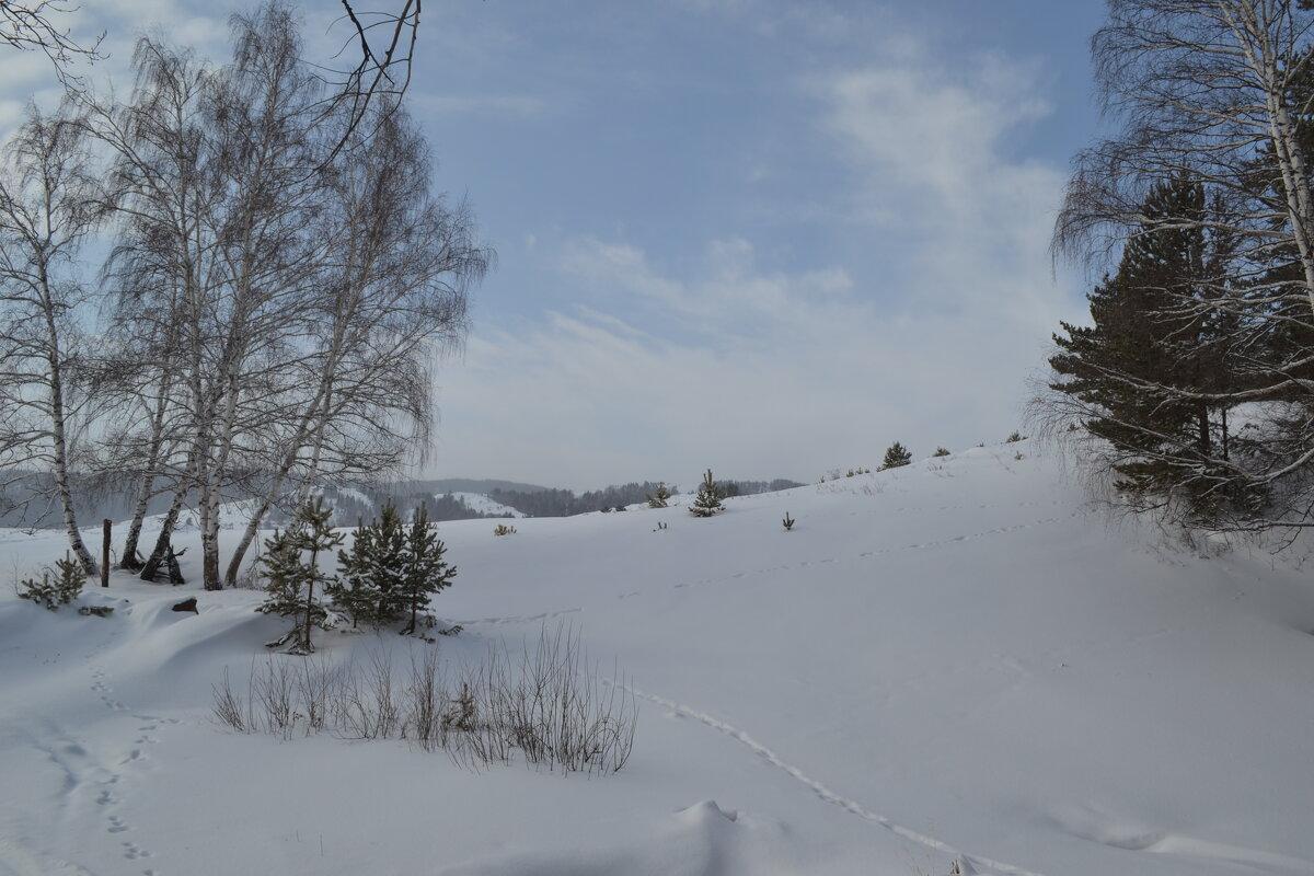 Снежные перевалы... - Андрей Хлопонин