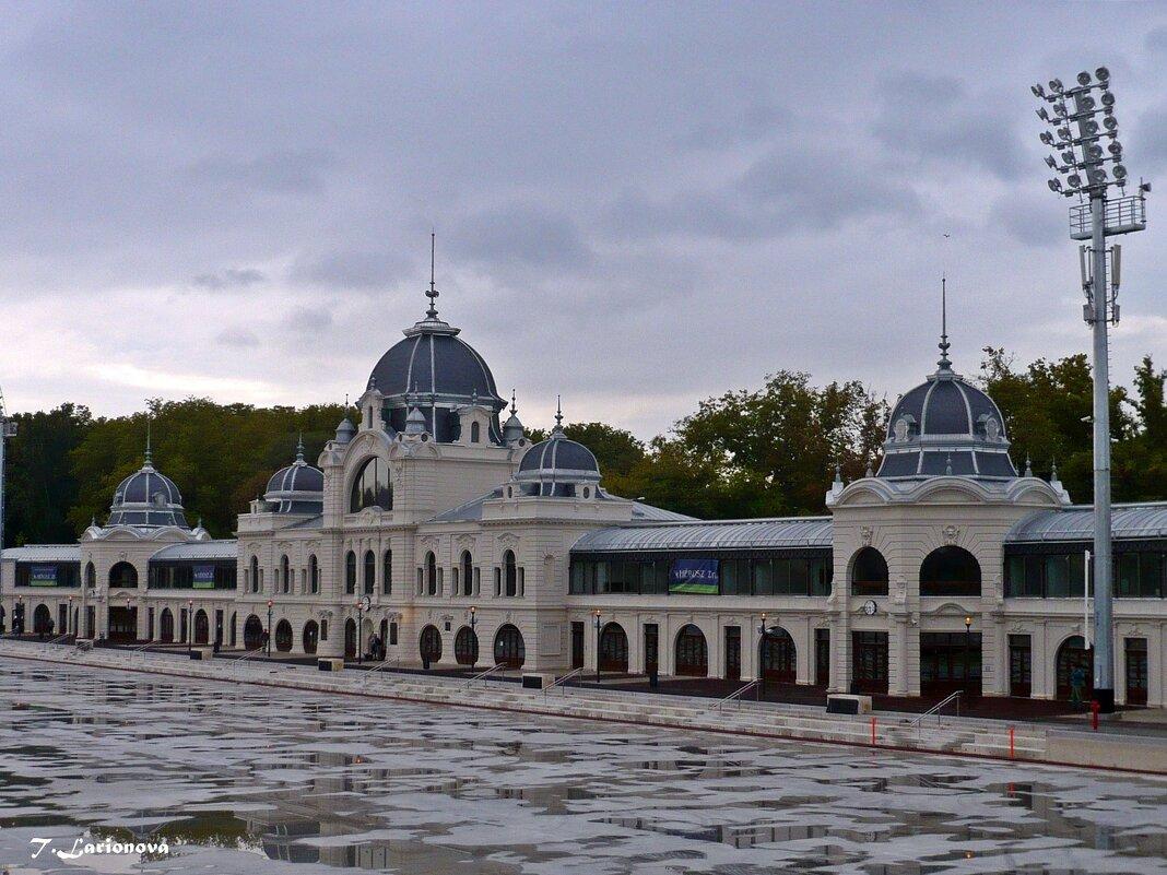 Будапешт - Татьяна Ларионова