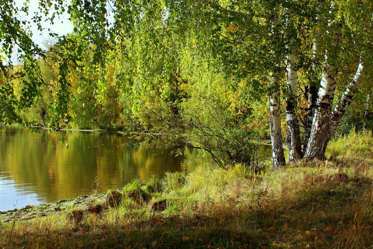 Осенняя святая колыбель... - Нэля Лысенко