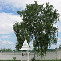 Вятка :: Ольга Михеева
