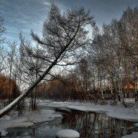 Выживание... :: Дмитрий Алдухов
