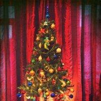 Рождественская ёлка. :: Елена Kазак