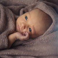 Малыш Мироша :: Alena Gorshkova