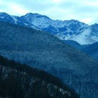 Седые горы :: Marina Timoveewa