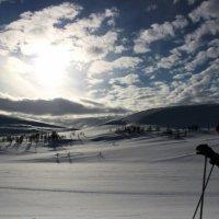 свет и снег :: liudmila drake
