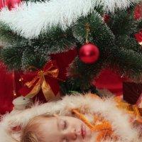 рождественский подарочек :: Tanana К