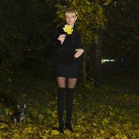 Вечерняя осень. :: Андрей Бурлака