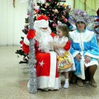 Красивая борода у Деда Мороза! :: Елизавета Успенская