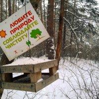 Любите природу (от Григория Иваныча) :: Сергей Журов