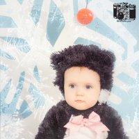Снежная кошечка :: Творческая группа КИВИ