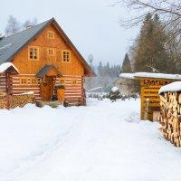 В Крконошских горах :: Valeria Ashhab