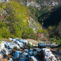 В горах :: Елена Миронова
