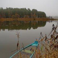 Затопленные чувства ноября... :: Александр | Матвей БЕЛЫЙ