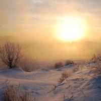 Зимнее утро :: sergej-smv
