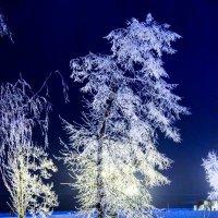 Декабрь ночью :: Арсений Корицкий