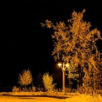 Декабрь ночная набережная Самары :: Арсений Корицкий