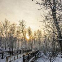 Мостик в парке :: юрий Амосов