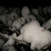 снежные шапки :: Галина R...