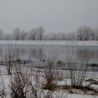 зима :: Олька Н